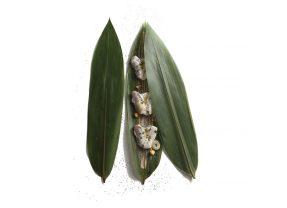 Bambú y kokotxas por Elena Arzak