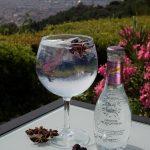 Gin tonics con vistas a Barcelona